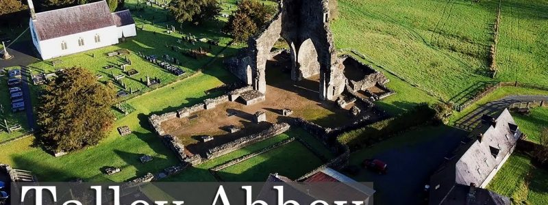 The Fish Farming Premonstratensians Of Talley Abbey